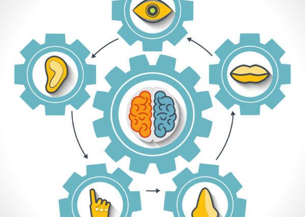 Marketing Sensorial: Entenda o que ele pode fazer pelo seu negócio.
